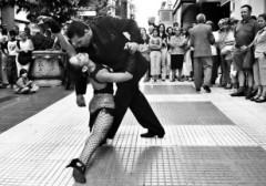 tango,tango a salerno salerno international tango festival,umbilicus mundi,festival del tango a salerno,abbraccio del tango,eventi agosto 2012 a salerno,ballo salerno,eventi di ballo a salerno estate 2012,estate a salerno